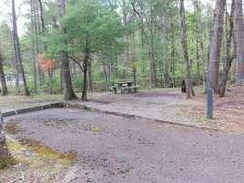 Otter Creek Campground near Monroe Virginia3