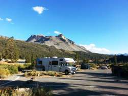 tioga-campground-lee-vining-ca-3