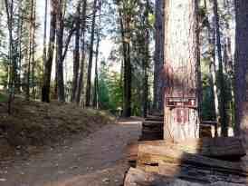 inn-town-campground-nevada-city-10
