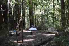 Trail Camp, site #8