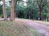 lake-leland-park-campground-4