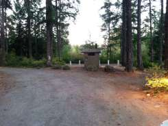 quilcene-community-campground-washington-3