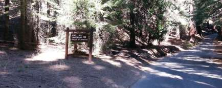 atwell-mill-campground-sequoia-national-park-02