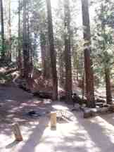 atwell-mill-campground-sequoia-national-park-13