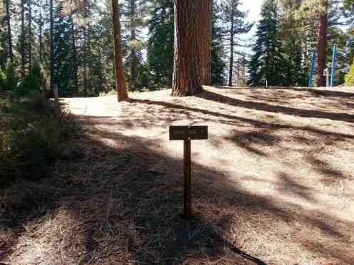 azalea-campground-sequoia-national-park-08