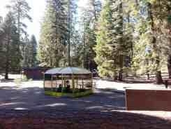 azalea-campground-sequoia-national-park-14