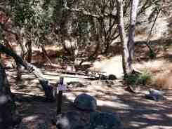 buckeye-campground-sequoia-kings-canyon-national-park-06