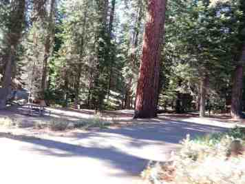 dorst-creek-campground-sequoia-kings-canyon-national-park-09