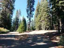 dorst-creek-campground-sequoia-kings-canyon-national-park-14