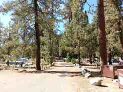 lodgepole-campground-sequoia-kings-canyon-national-park-10