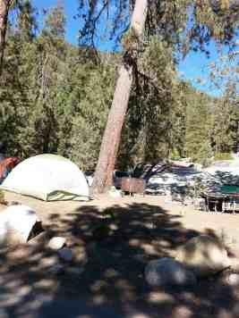 lodgepole-campground-sequoia-kings-canyon-national-park-11