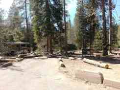 lodgepole-campground-sequoia-kings-canyon-national-park-18
