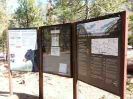 moraine-campground-sequoia-kings-canyon-national-park-01