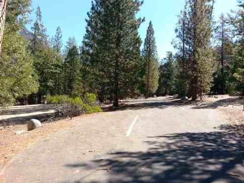 moraine-campground-sequoia-kings-canyon-national-park-12