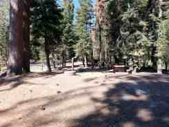 sunset-campground-sequoia-kings-canyon-national-park-10