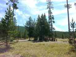 sheffield-campground-teton-forest-05