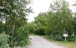 glacier-elkhorn-campground-babb-mt-3