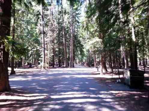 priest-river-mudhole-campground-07
