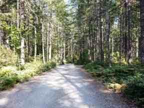big-creek-campground-hoodsport-wa-10