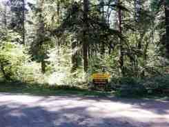 collins-campground-brinnon-wa-01