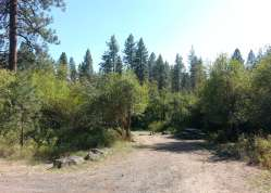 dragoon-creek-campground-creston-wa-11
