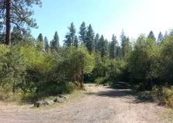dragoon-creek-campground-creston-wa-11