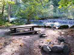 elkhorn-campground-olympic-national-forest-07