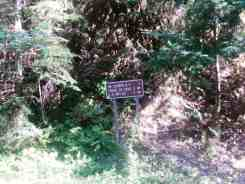 elkhorn-campground-olympic-national-forest-11