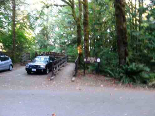 falls-creek-campground-quinault-wa-07