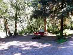 hoh-oxbow-campground-wa-6