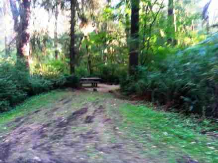 klahanie-campground-wa-04