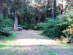 klahanie-campground-wa-05