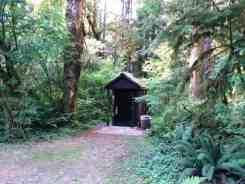 klahanie-campground-wa-06