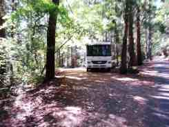seal-rock-campground-wa13
