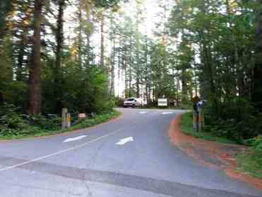 willaby-campground-quinault-wa-02
