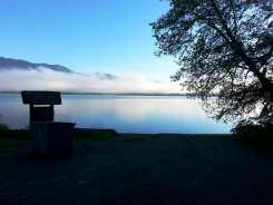 willaby-campground-quinault-wa-07
