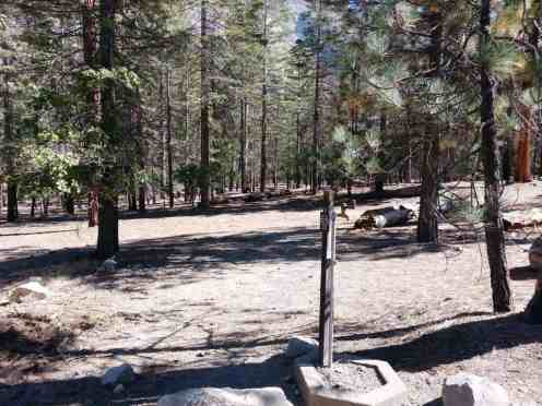 canyon-view-campground-sequoia-kings-canyon-national-park-04