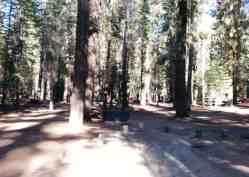 stony-creek-campground-sequoia-07