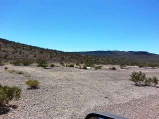 The Pads Near Death Valley
