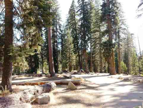 upper-stony-creek-campground-sequoia-9