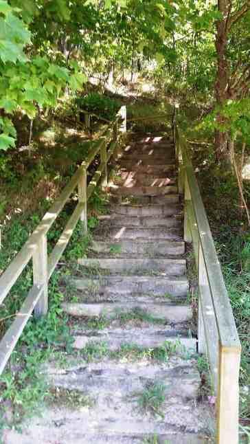 buttersville-park-campground-ludington-mi-09