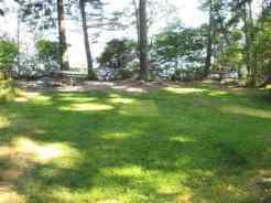 grass-site