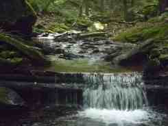 Worlds End State Park
