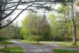 Davidson River Campground