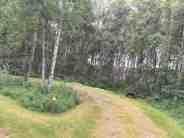 Chena Lake Recreation Area