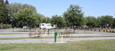 Jellystone Park Camp-Resort at Tower Park
