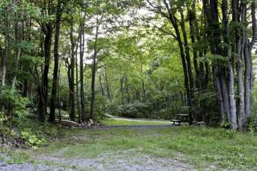 Peaceful Woodlands Campground