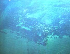 Bacoli - Baia sommersa
