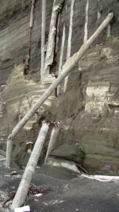 Spiaggia del Ciraccio - ex piloni di sostegno