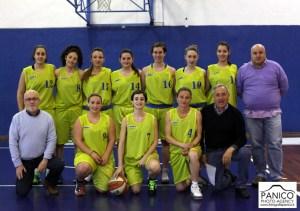 Flavio Basket (p)